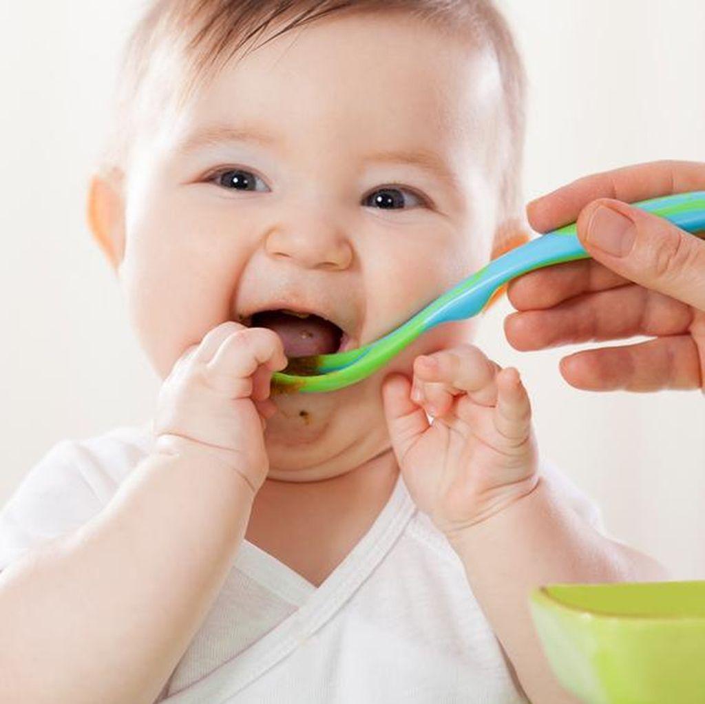 Standar Emas Makanan Bayi: IMD, ASI Eksklusif dan MPASI Bergizi