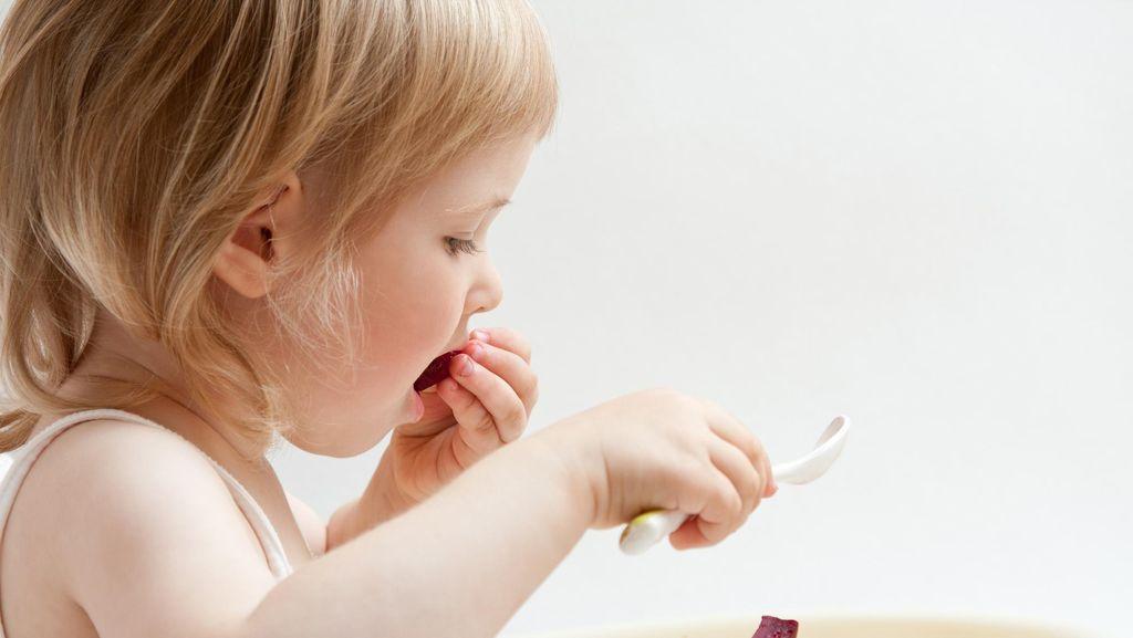 Metode Baby Led Weaning dan Pertumbuhan Gigi Anak