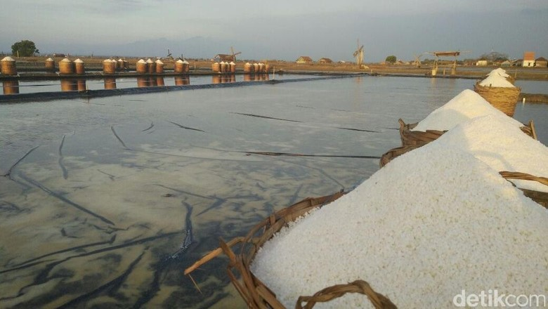 Garis Pantai Panjang, Kenapa RI Masih Impor Garam?