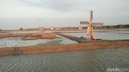 Cara Pemerintah Bereskan 3.700 Ha Lahan Garam Nganggur di NTT