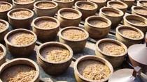 Tauco dan Oncom, Produk Tradisional Hasil Fermentasi Kacang-kacangan