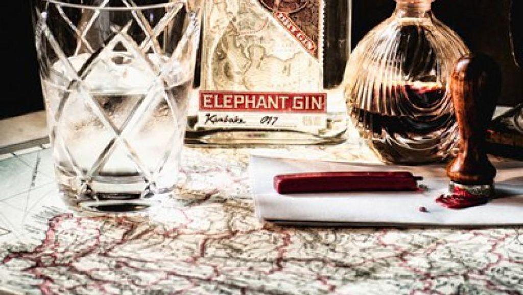Beli Satu Botol Gin Ini Bisa Selamatkan Seekor Gajah Liar Afrika