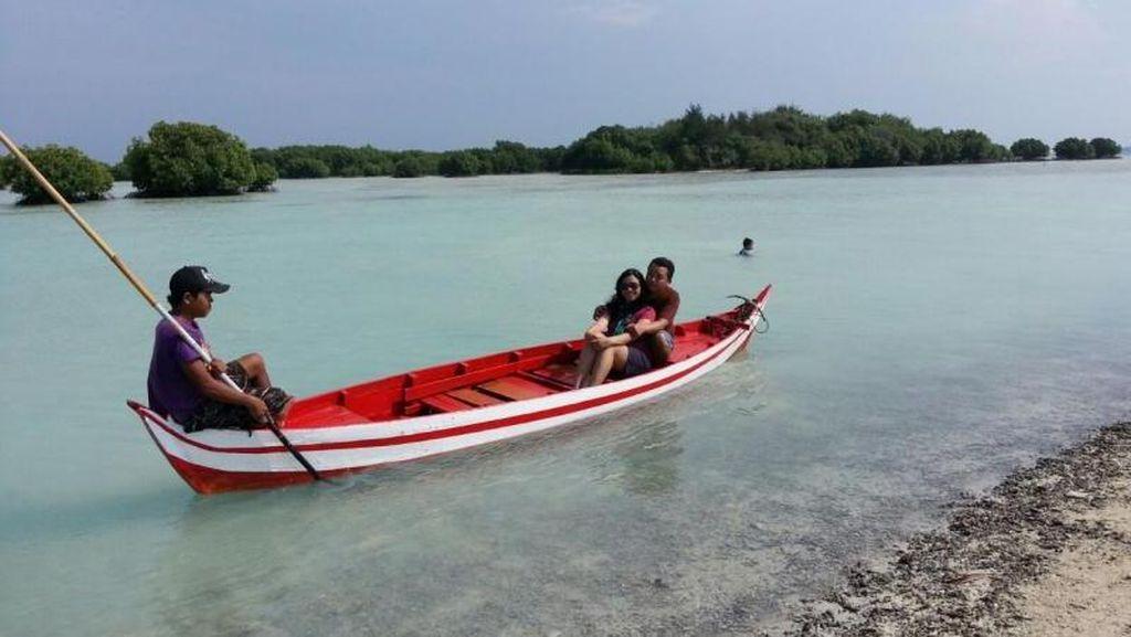 Seru! Keliling Naik Perahu di Hutan Mangrove Pulau Pari