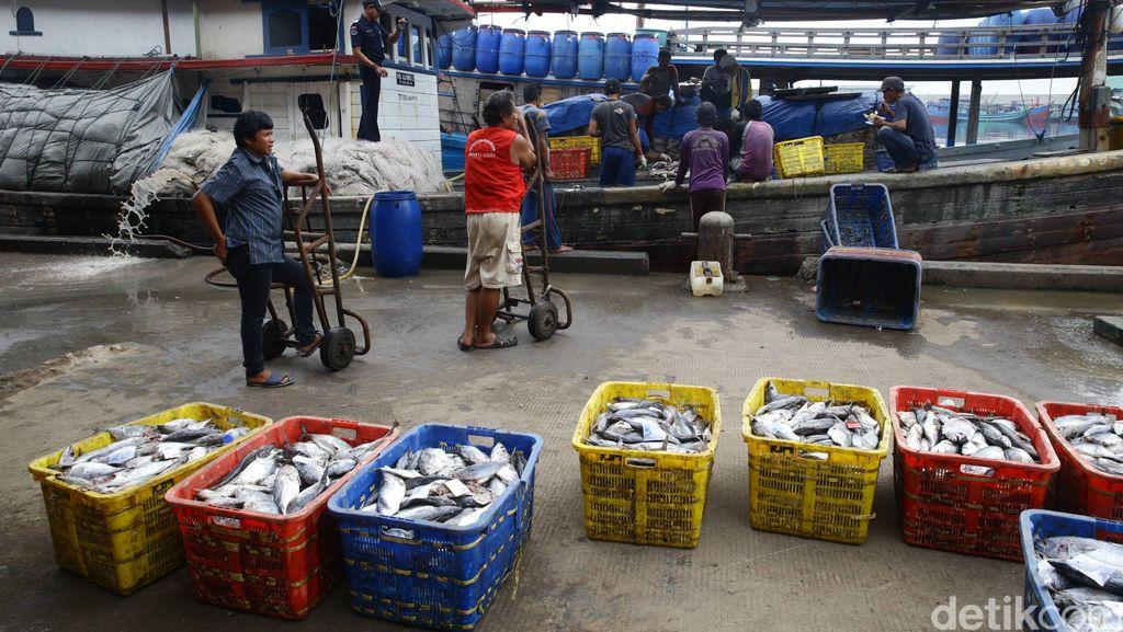 RI-AS Kerja Sama Sektor Kelautan dan Perikanan Rp 520 Miliar