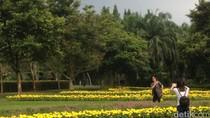 Yuk, Ajak Mama Kamu Bersantai di Taman Bunga