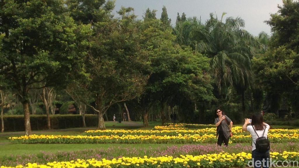 Lihat Foto Ini, Pasti Ingin Liburan ke Cianjur