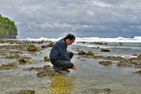 Presiden Jokowi mencuci muka di pantai di Miangas