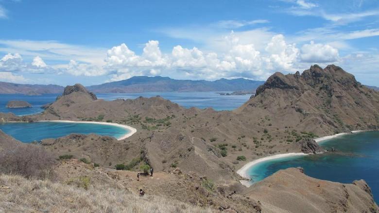 Foto: Panorama Pulau Padar (Afif/detikTravel)