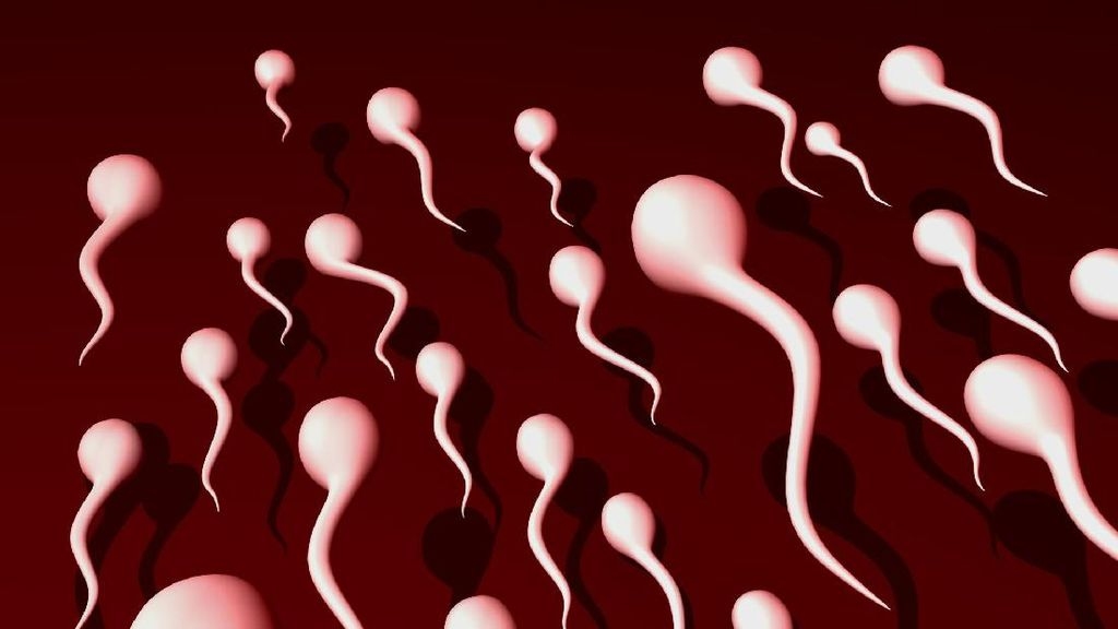 Jumlah Sperma Pria Terus Turun, Peneliti Khawatirkan Kepunahan Manusia