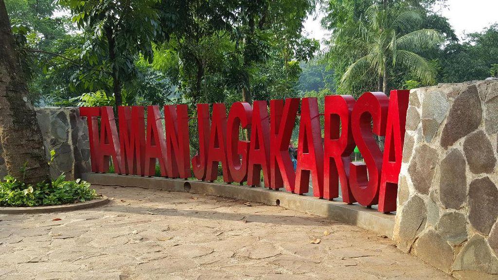 Mengenang Jasa Ahok di Taman Jagakarsa