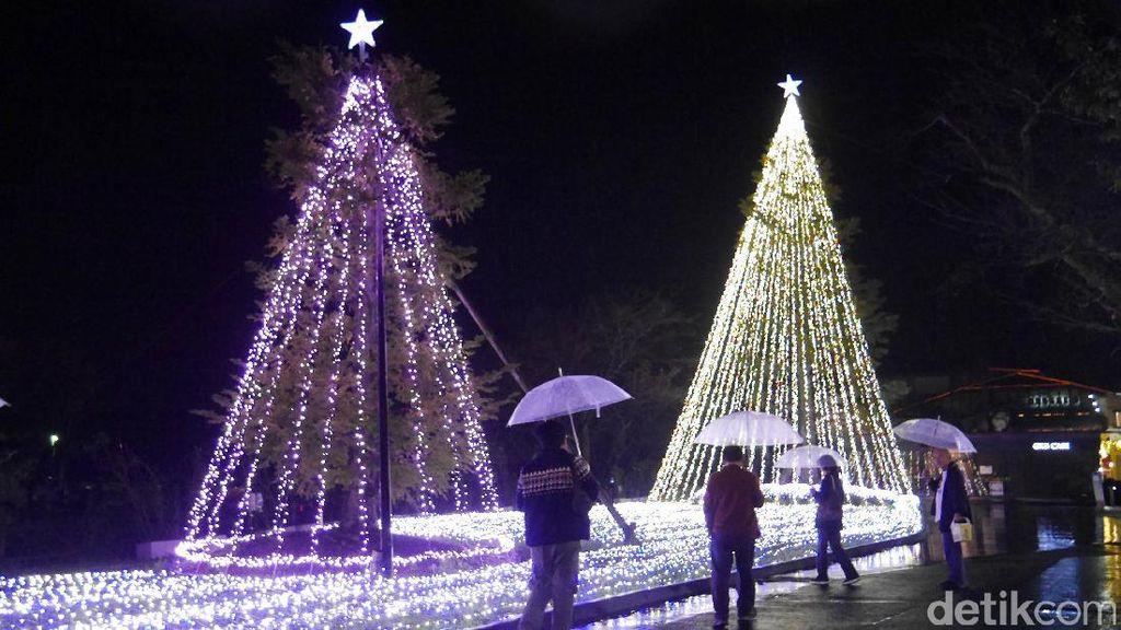Pohon Natal Raksasa & Terowongan dengan Kelip Lampu Meriah di Jepang