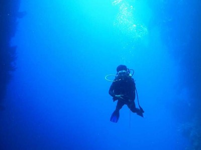 Begini Cantiknya Isi Laut Gorontalo yang Jarang Orang Tahu
