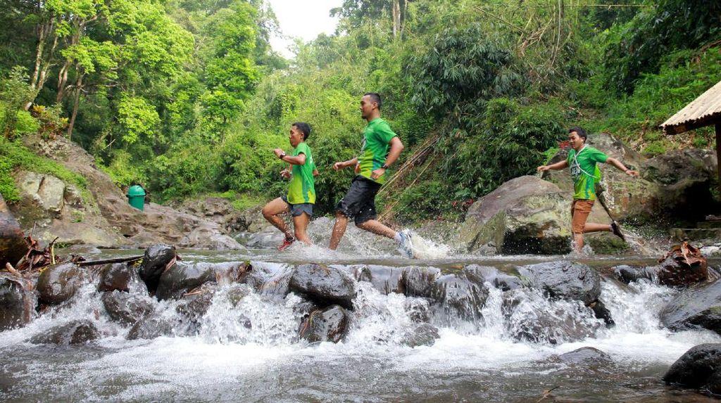 Ini Foto-foto Serunya Green Run di Banyuwangi