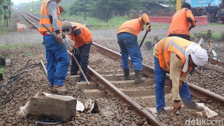 Rencana Jokowi Hubungkan Seluruh Kalimantan dengan Rel Kereta