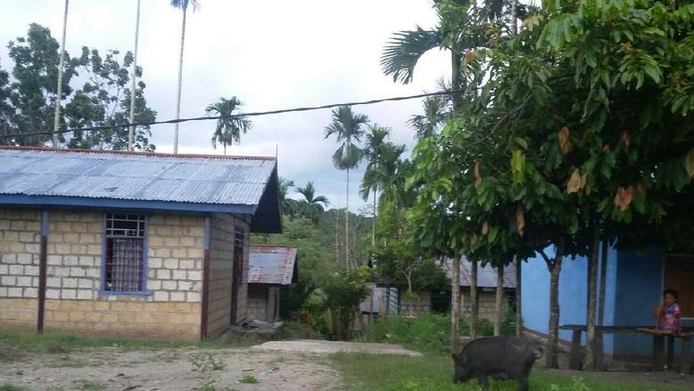 Satu Lagi Desa di Papua yang Dapat Listrik dari PLN