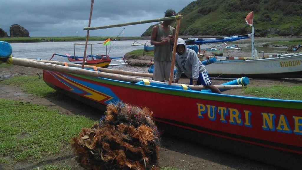 Nelayan Jember Kesulitan Tangkap Lobster, Ini Penyebabnya