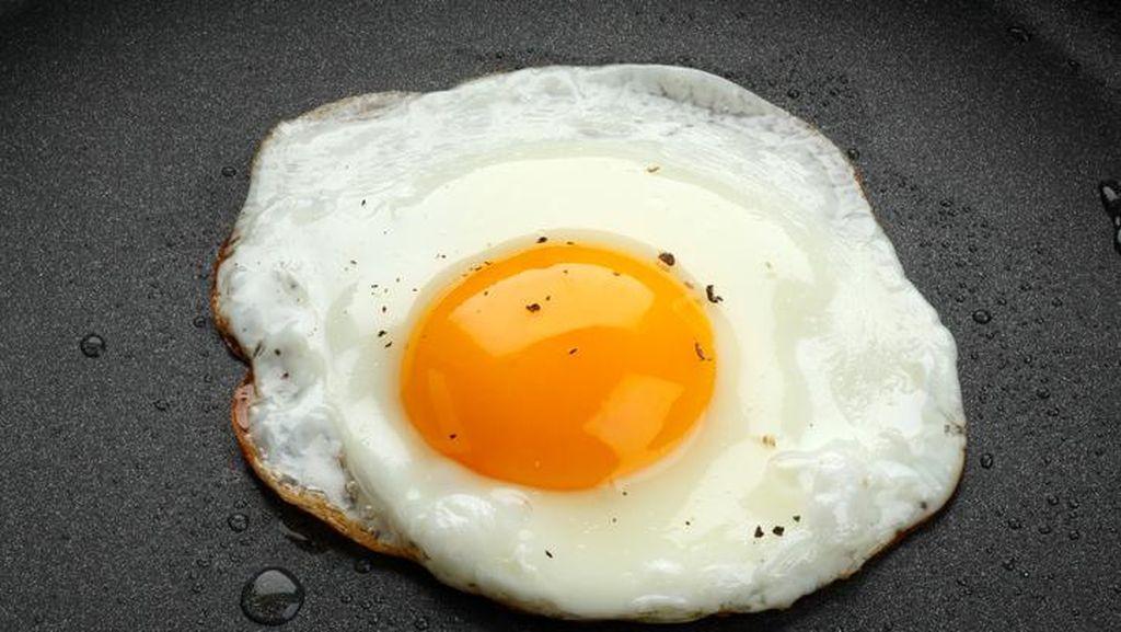 Mengapa Kuning Telur Berwarna Kuning Oranye  Lebih Disukai?