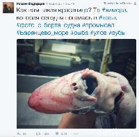 Laut Ekstrem dan Hewan-hewan 'Aneh' Bak Alien Temuan Nelayan Rusia