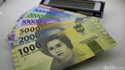 Tahun Ini Pemerintah Bayar Utang Subsidi Pupuk Rp 4 Triliun