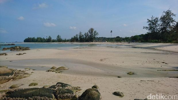 Pantai Trikora yang landai dan indah (Masaul/detikTravel)