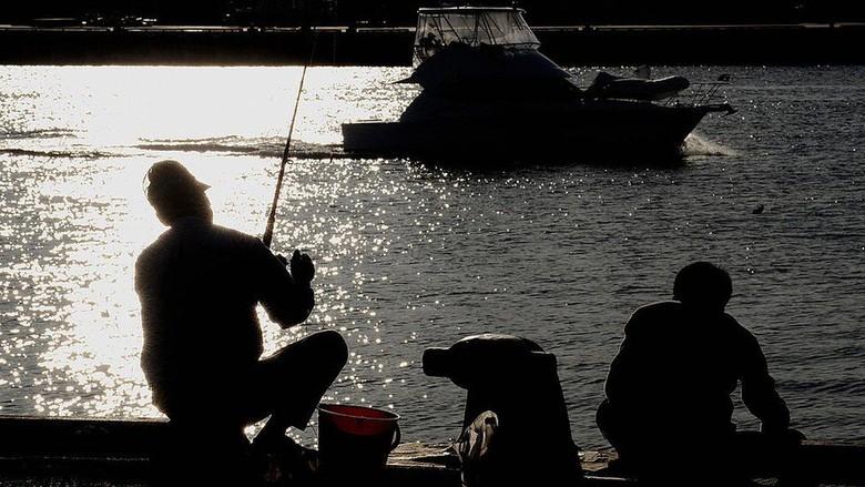 Pemancing ini Selamat Setelah Diseret Ikan Marlin Selama 6 Jam