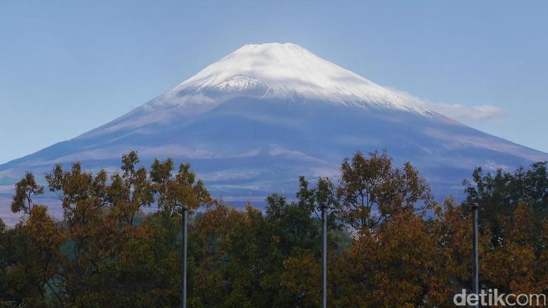 Foto: Gunung Fuji (Kurnia/detikTravel)