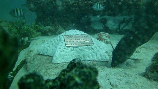 Beberapa cetakan karya seni yang dijadikan tempat menaruh abu kremasi (Neptune Memorial Reef/Facebook)