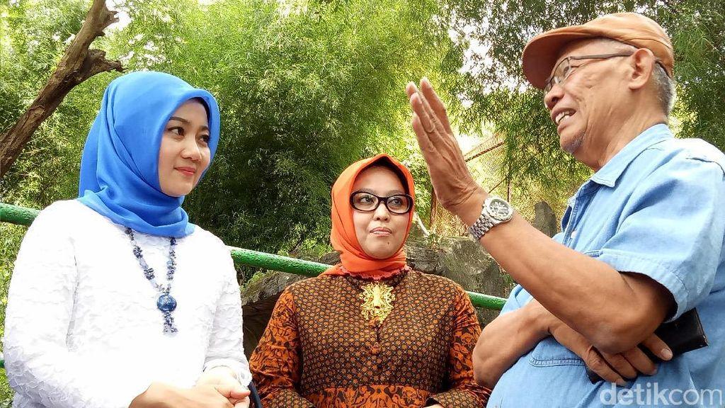 Cek Beruang Kurus di Bonbin Bandung, Ini Kata Istri Ridwan Kamil