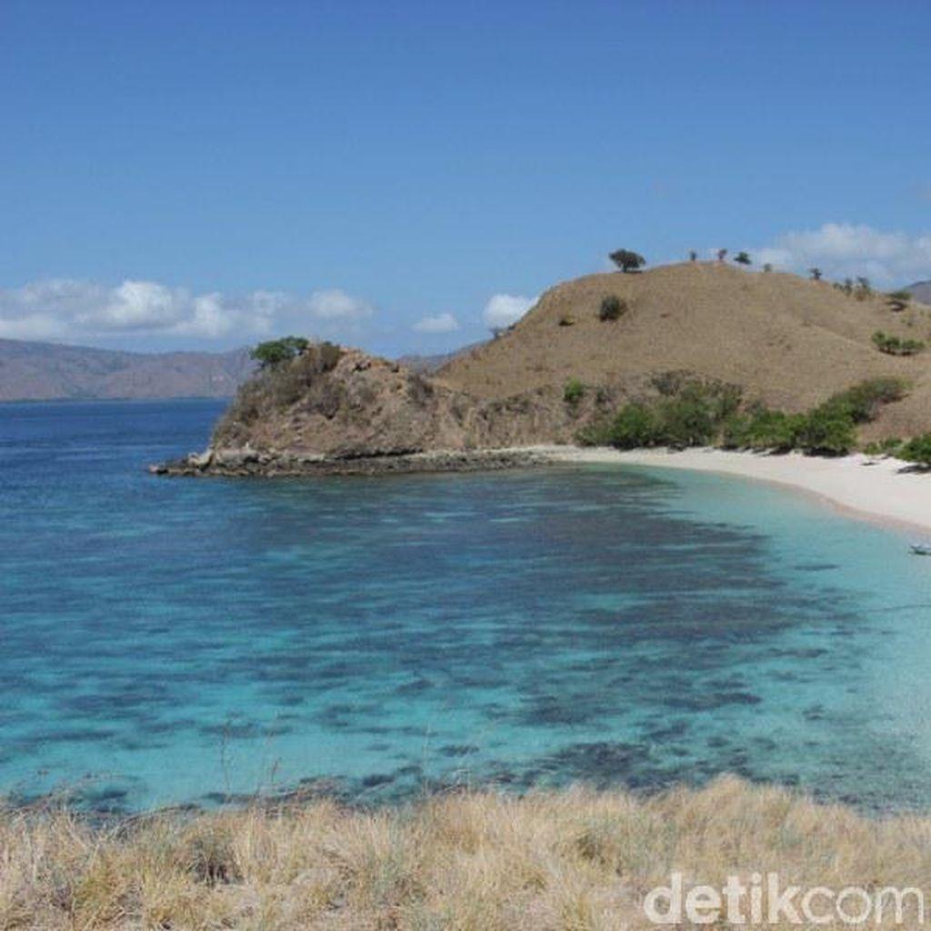Liburan Rossi di Labuhan Bajo Lanjut ke Pantai Pink dan Manta Point