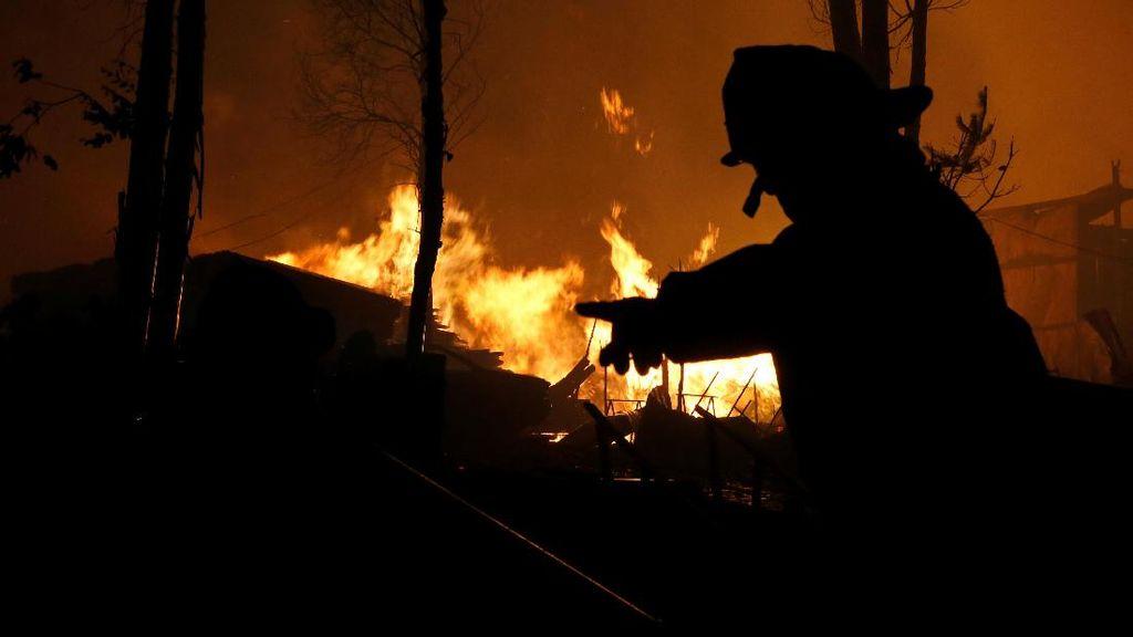 Berjibaku Padamkan Kebakaran Hutan di Chili