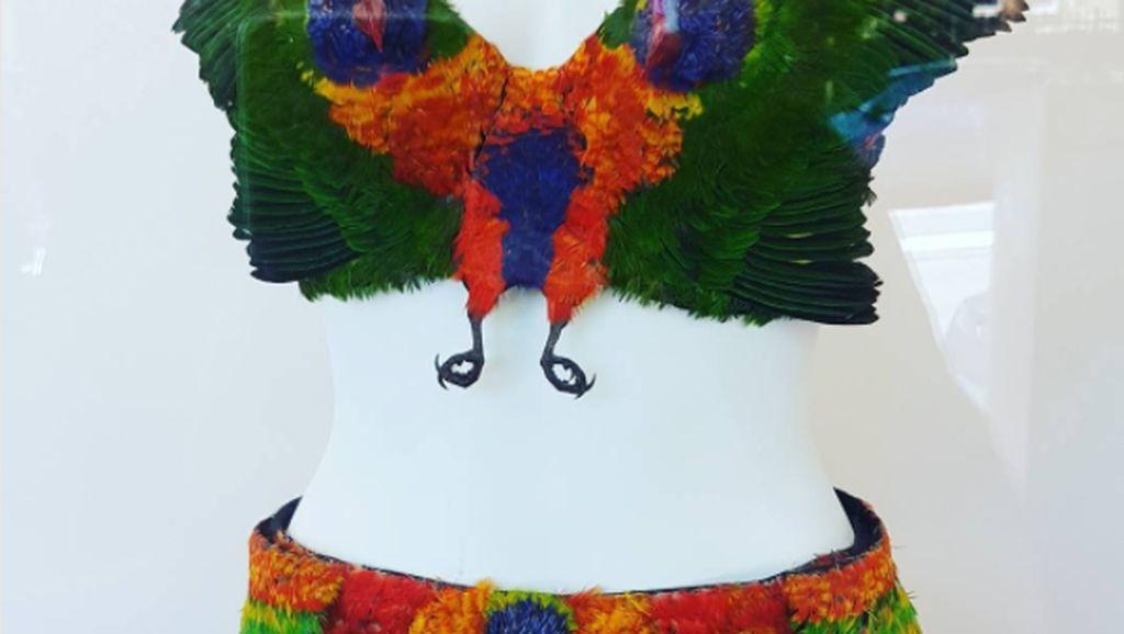 Hii! Seniman Ini Buat Bra dari Bangkai Burung Seharga Rp 53 Juta