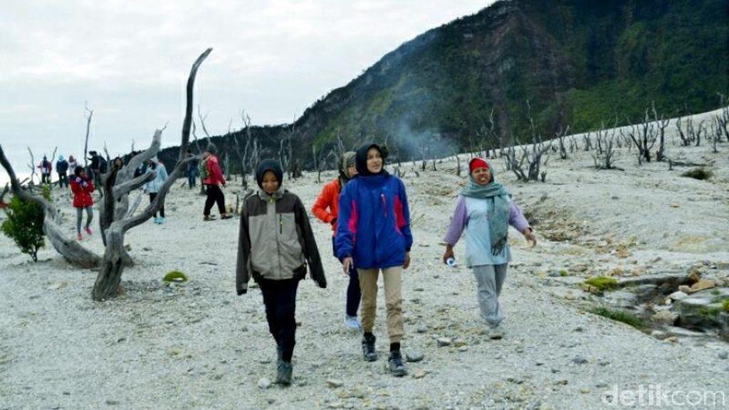 Menjelajahi Hutan Mati Gunung Papandayan