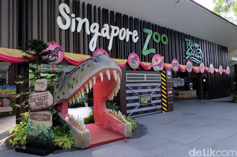 Foto: Singapore Zoo berada di kawasan Upper Seletar Reservoir. Memiliki luas 26 hektar, Singapore Zoo menampung 2.800 ekor hewan dari 300 spesies, di mana 26 persen di antaranya terancam punah (Andhika Prasetia/detikTravel)