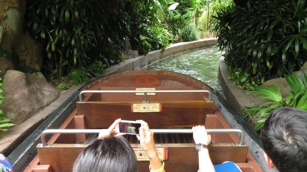 Seperti Jelajah Amazon, Padahal Lagi di River Safari Singapura