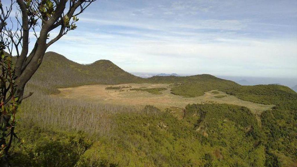 Berbagai Sisi Gunung Papandayan yang Memesona
