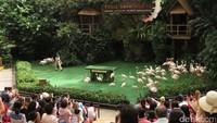 Berbagai atraksi burung juga dapat disaksikan di High Flyers Show pada pukul 11.00 dan 15.00 waktu setempat, memberi makan penguin pada pukul 15.30 waktu setempat, dan atraksi Kings of the Skies pada pukul 10.00 dan 16.00 waktu setempat (Andhika/detikTravel)