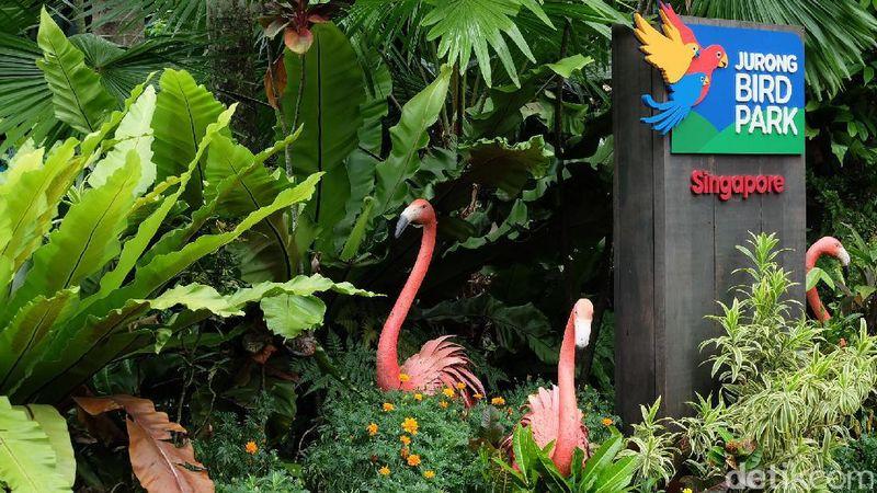 Jurong Bird Park menjadi salah satu destinasi liburan favorit wisatawan ketika berkunjung ke Singapura. Kebun binatang ini bahkan menyimpan ribuan ekor burung yang terdiri dari berbagai spesies berbeda (Andhika/detikTravel)