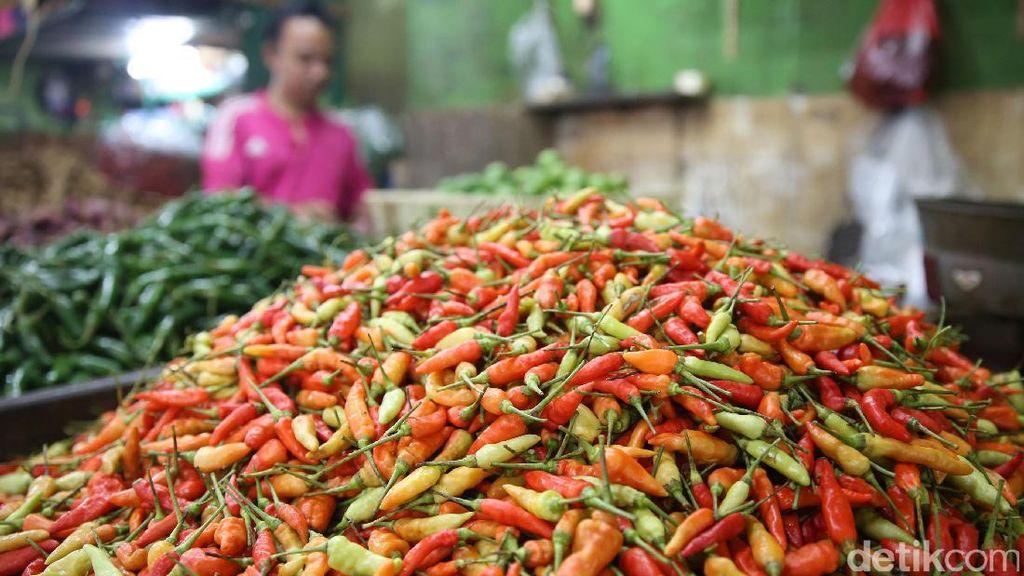 Harga Cabai Rawit Belum Turun Juga dari Rp 150.000/kg