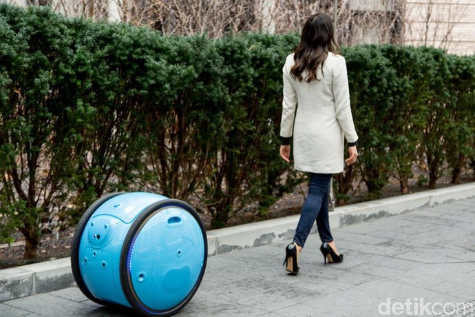 Gita dan Kilo, Robot Buatan Piaggio