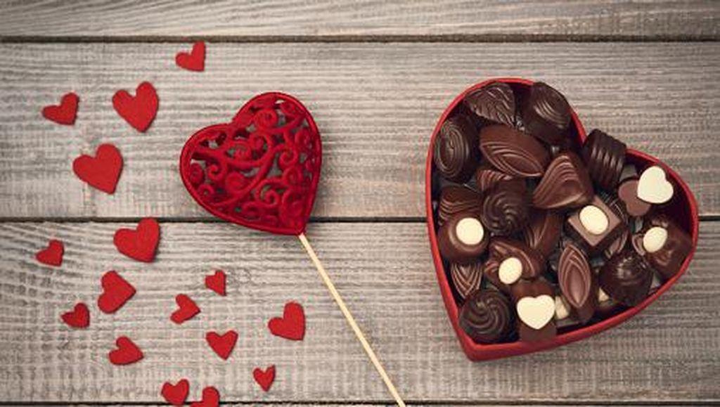 Cokelat Termahal dan Produsen Cokelat Terbesar di Dunia, Ini Fakta Unik Cokelat (1)