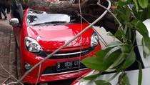 Pohon Tumbang Timpa Mobil di Sawah Besar Jakarta Pusat