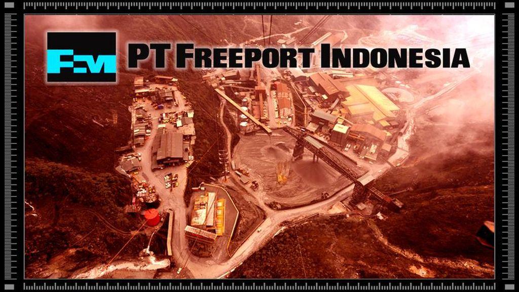 Kontrak Karya dan IUPK Jadi Akar Masalah Freeport, Apa Bedanya?