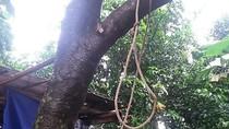 Pria di Tangerang Ditemukan Tewas Gantung Diri di Pohon Belimbing