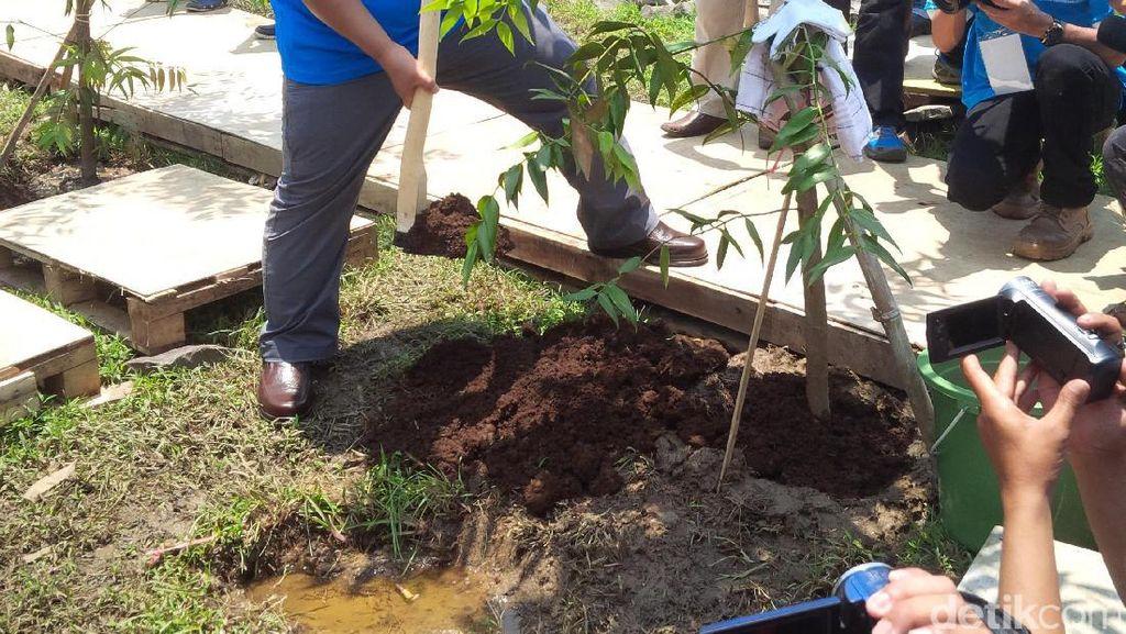 Hutan NARBO di Kawasan Waduk Jatiluhur Kembali Dihijaukan