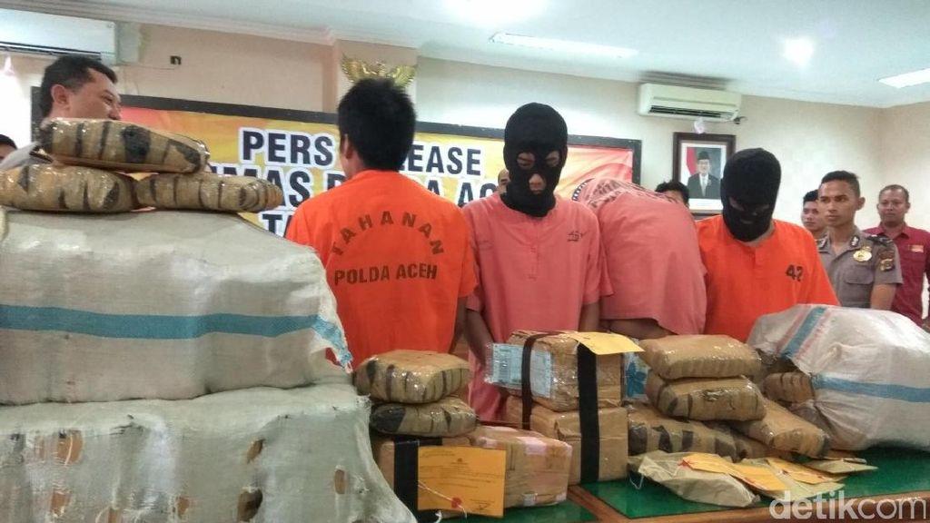 Polda Aceh Tangkap 2 Tersangka, Sita 100 Kg Ganja