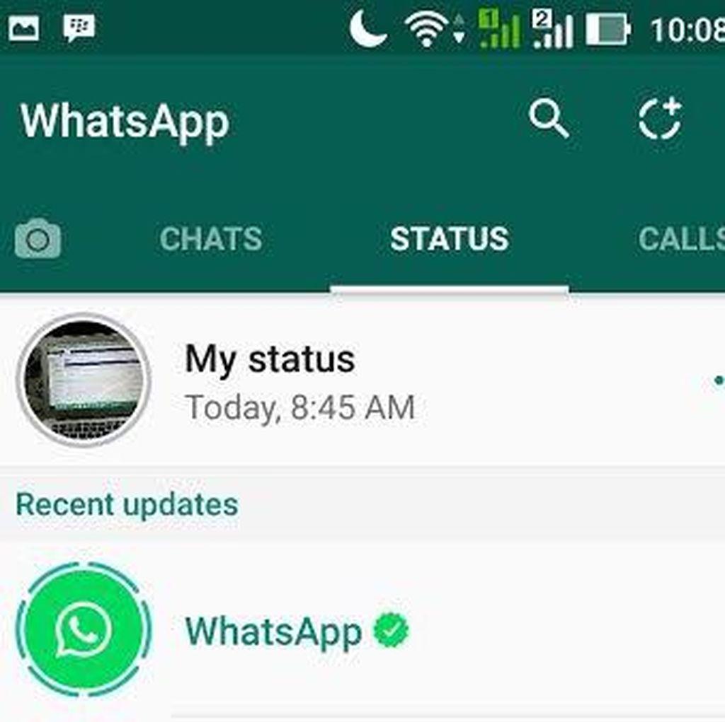 Ramai-ramai Kepo Status di WhatsApp