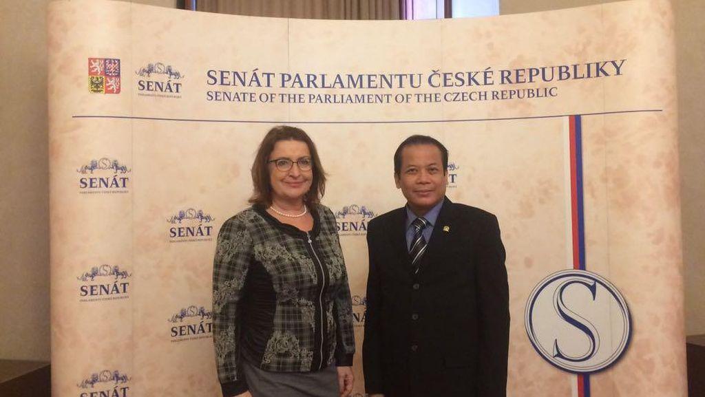 Diplomasi Parlemen Jadi Sarana Peningkatan Kerja Sama RI-Ceko