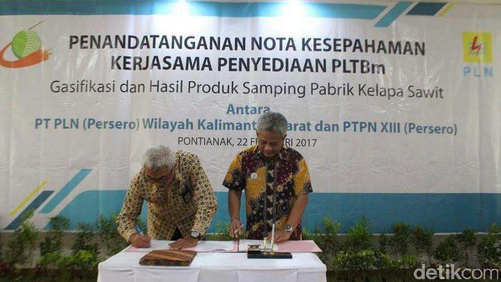PLN Beli Listrik dari Limbah Sawit PTPN XIII