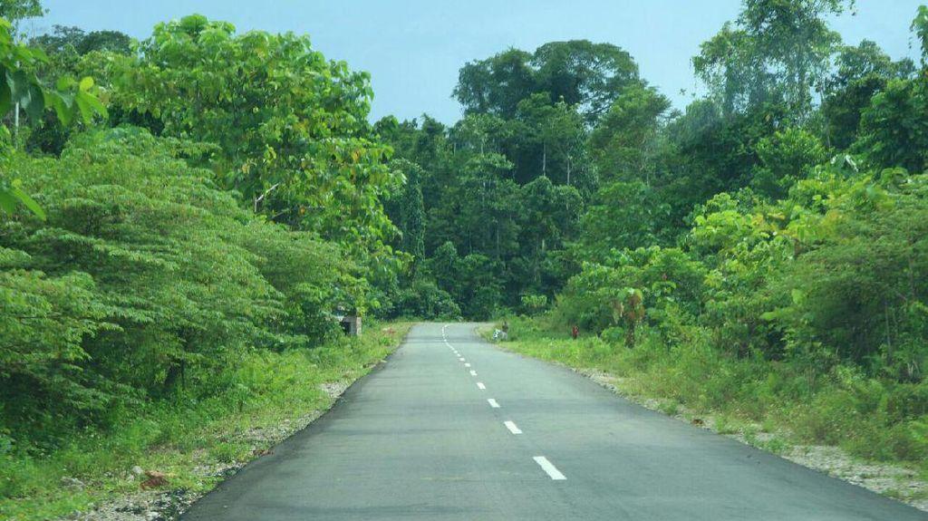 Pemerintah Juga Bangun Jalan Pantai Utara di Papua