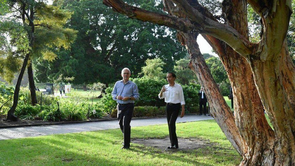 Potret Kebersamaan Jokowi-Turnbull Jalan Pagi di Sydney